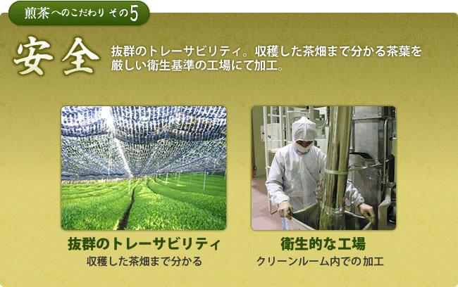 抜群のトレーサビリティ。収穫した茶畑まで分かる茶葉を厳しい衛生基準の工場で加工。