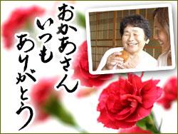 母の日・お茶と和菓子