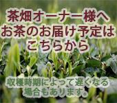 茶畑オーナー発送日