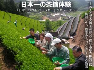茶摘体験ご案内「日本一のお茶、作ろうね!」プロジェクト