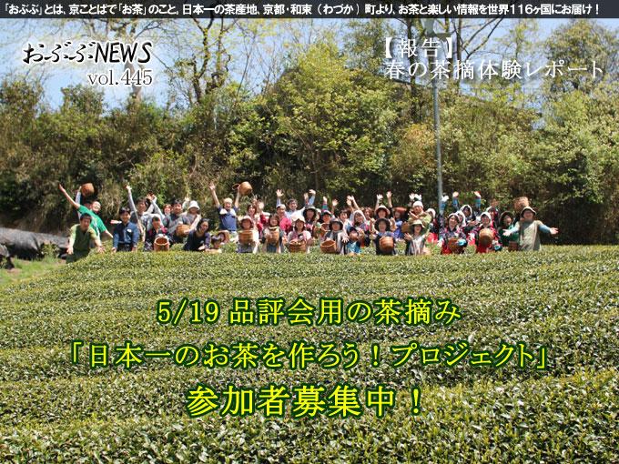 【おぶぶNEWS】 新茶シーズン突入!