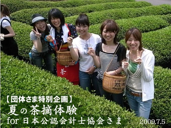 【団体企画】公認会計士のみなさまとの「夏の茶摘み体験」