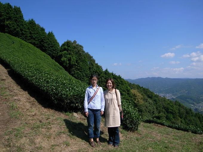 【和束訪問記】お茶の花が咲いていました。