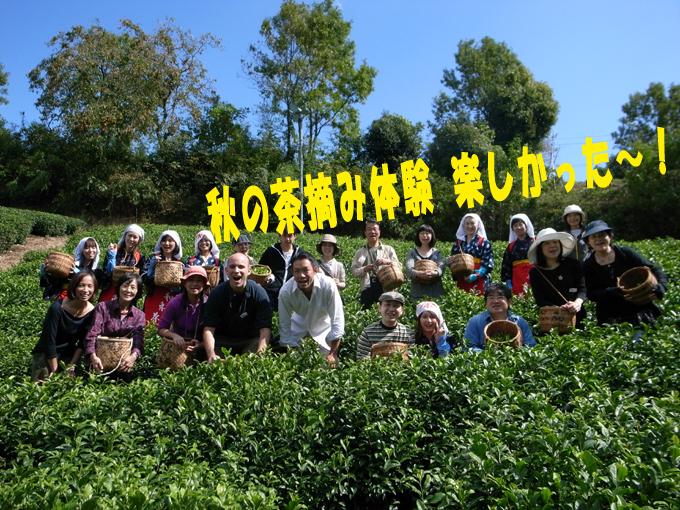 【ご感想】秋の茶摘み体験の参加者さまより