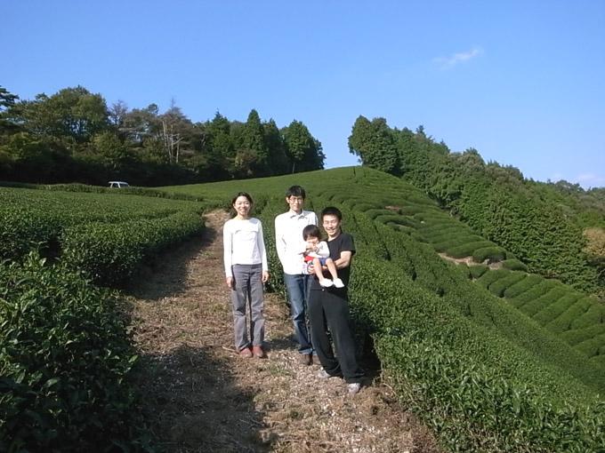 【和束訪問記】茶畑が輝いて見えました