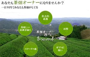 【プレスリリース】今「おいしいとこ取り」の農作物オーナー制度が人気!