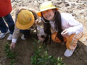 【プレスリリース】小学生の食育は、茶畑で土と木に触れながら。