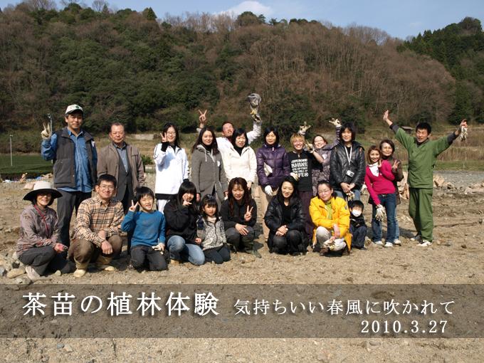 【イベント報告】2000本の茶苗の植林体験