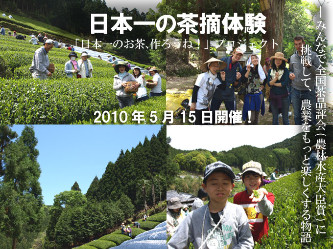 【報告】日本一の茶摘体験2010