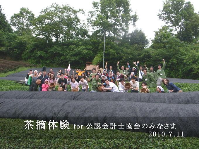 【団体茶摘体験】公認会計士協会さま
