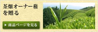 茶畑オーナー権を贈る