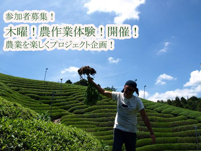 【ご案内】 木曜!農作業体験!