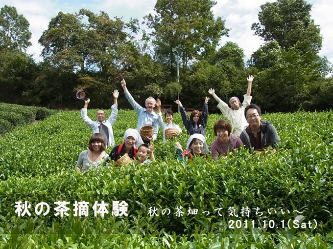 【ご報告】秋の茶摘体験