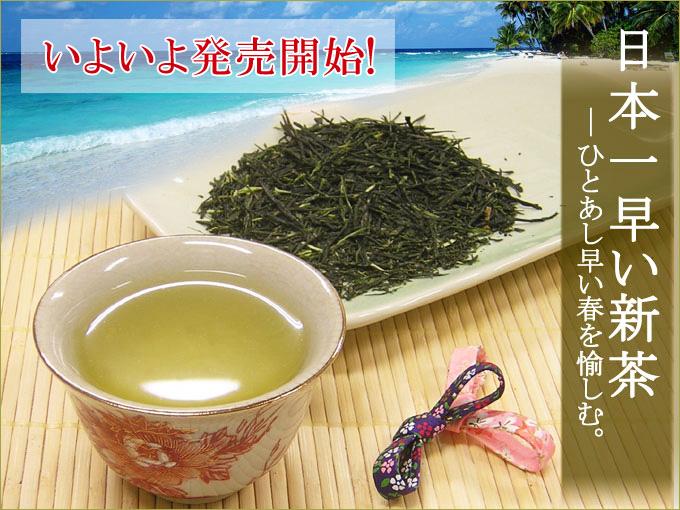 【予約開始】日本一早い新茶