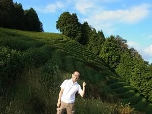 【茶畑訪問】浜松のお米屋さん角十(かくじゅう)さま 茶畑訪問