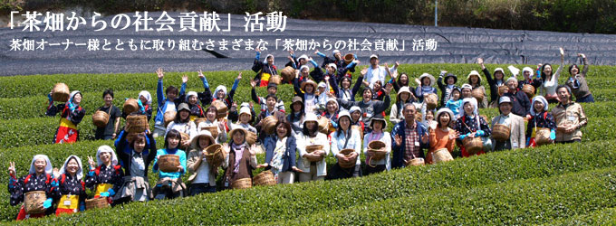 茶畑からの社会貢献