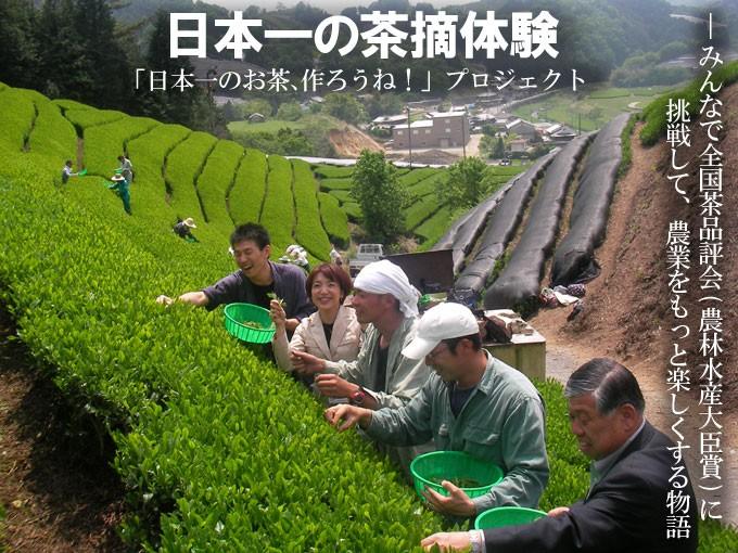 茶摘体験「日本一のお茶、作ろうね!」プロジェクト