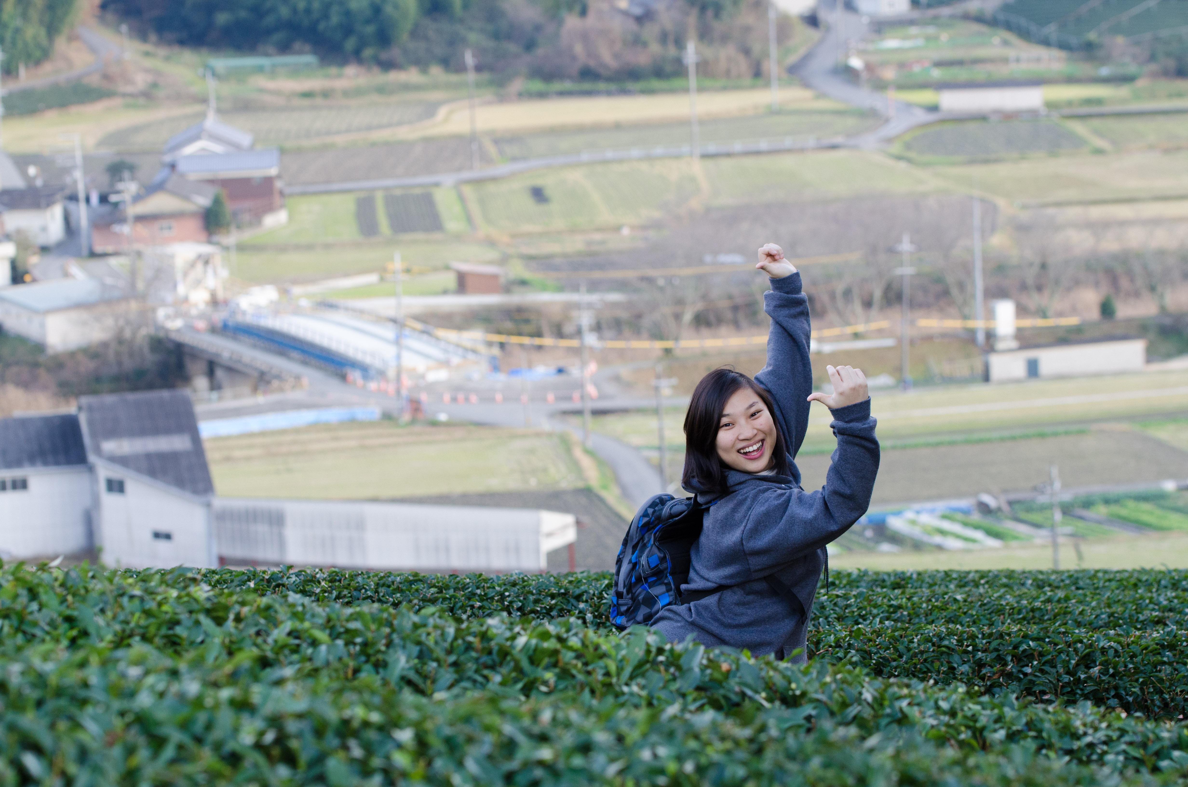 小林到访探茶田