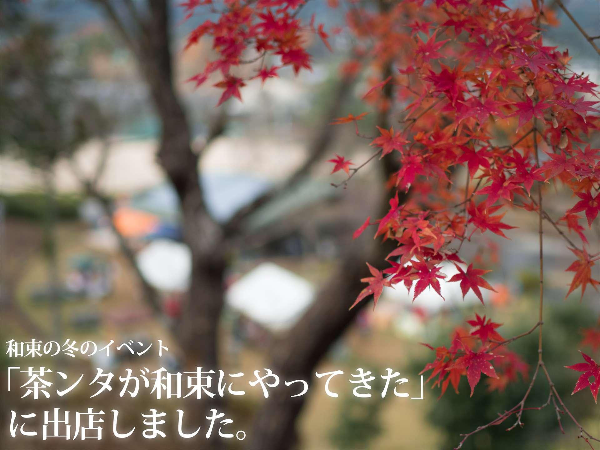 和束町のイベント「茶ンタが和束にやってきた」に出店してきました!