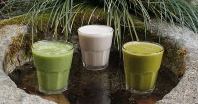 日本茶スムージー (Green Tea Smoothies)