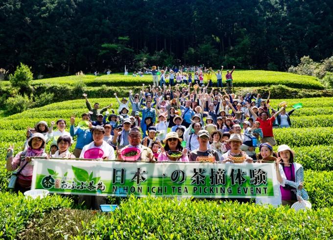 【イベント報告】日本一の茶摘体験2016<br>~日本一のお茶つくろうね!プロジェクト~