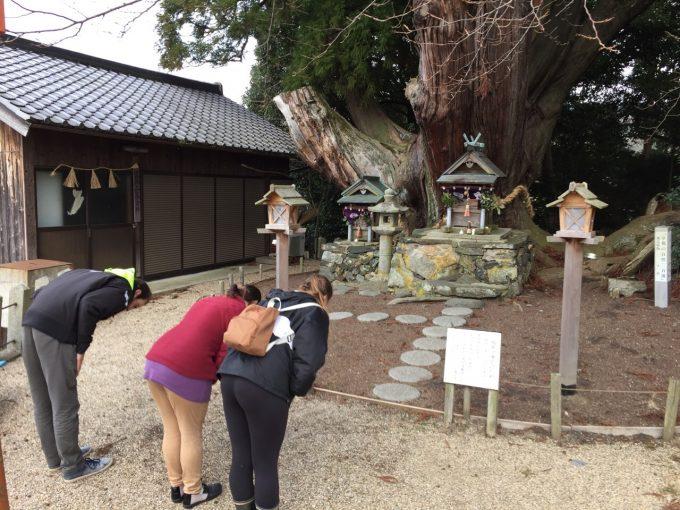 インターン生と行く。和束町名所巡り【大杉さん 八坂神社】