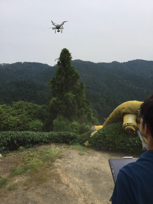 今日は茶畑マップ作成とドローン撮影してみましたー【京都 宇治茶 和束町】