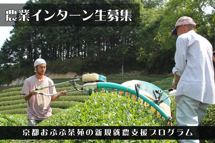 おぶぶの農業インターン制度