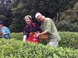 秋の茶摘&手揉み体験やりましたっ【京都 宇治 和束町】