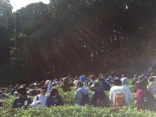 高校生が茶畑に校外学習をしに来てくれました〜【京都 宇治茶 和束町】