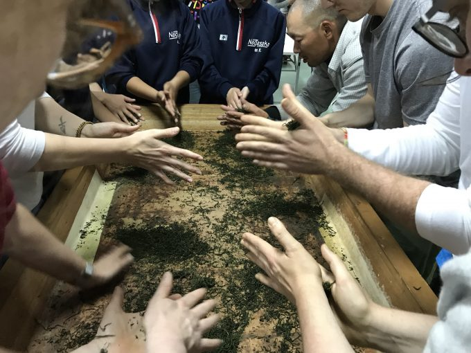 【日本茶を世界へ】UKティーアカデミー(英)&ITC(蘭)の茶産地での日本茶研修