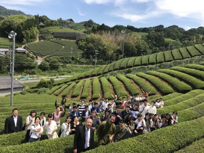 【イベント報告】学校法人誠心学園・国際フード製菓専門学校の生徒さんが茶摘に来てくれました!!!