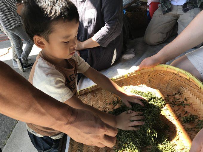 【出張茶摘体験】滋賀愛東町・NPO法人愛の町エコ倶楽部 お茶っぱーず
