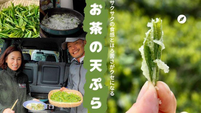 茶産地でしか味わえない!「お茶の天ぷら」自宅で作ってみませんか?