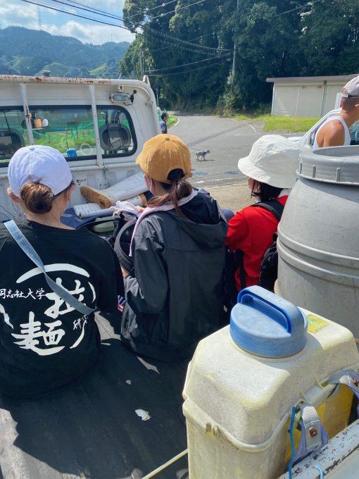 【今週の農作業】ボランティアさん!